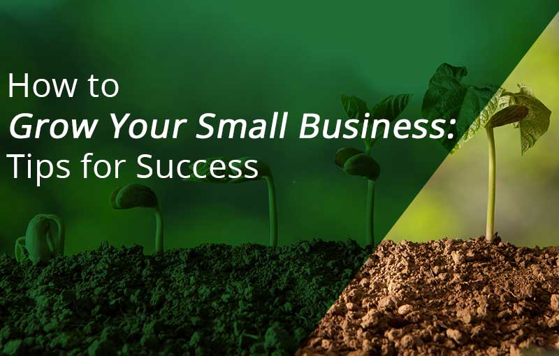 how to grow your small business tips for success
